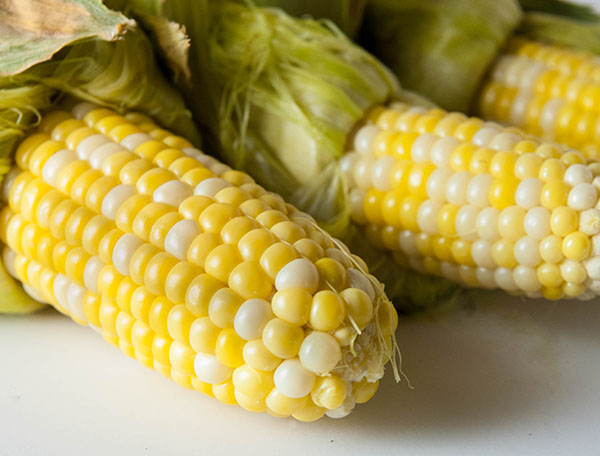 Easy No Shuck Oven Baked Corn on the Cob