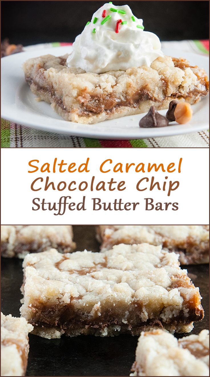 Salted caramel chocolate chip butter bars from www.SeasonedSprinkles.com