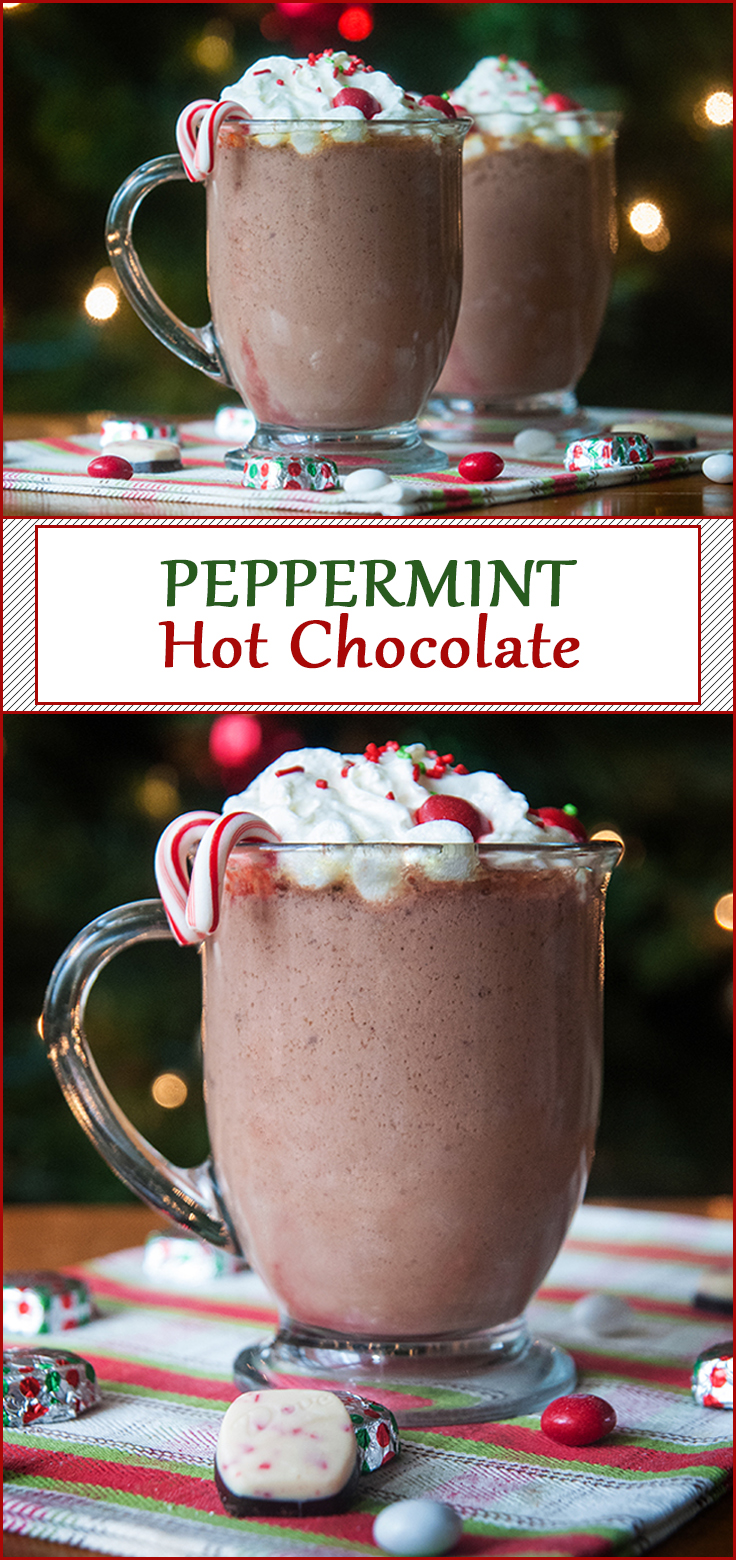 Easy Slow Cooker Peppermint Hot Chocolate from www.SeasonedSprinkles.com