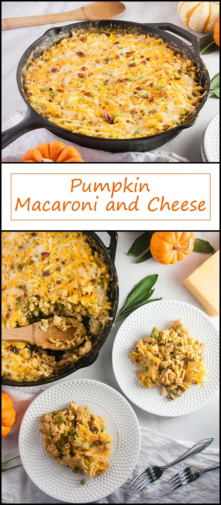 Pumpkin Macaroni and Cheese with Pancetta and Peas from www.seasonedsprinkles.com