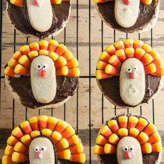 Easy Turkey Cookies