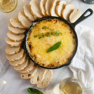 Caramelized Onion Cheese Dip
