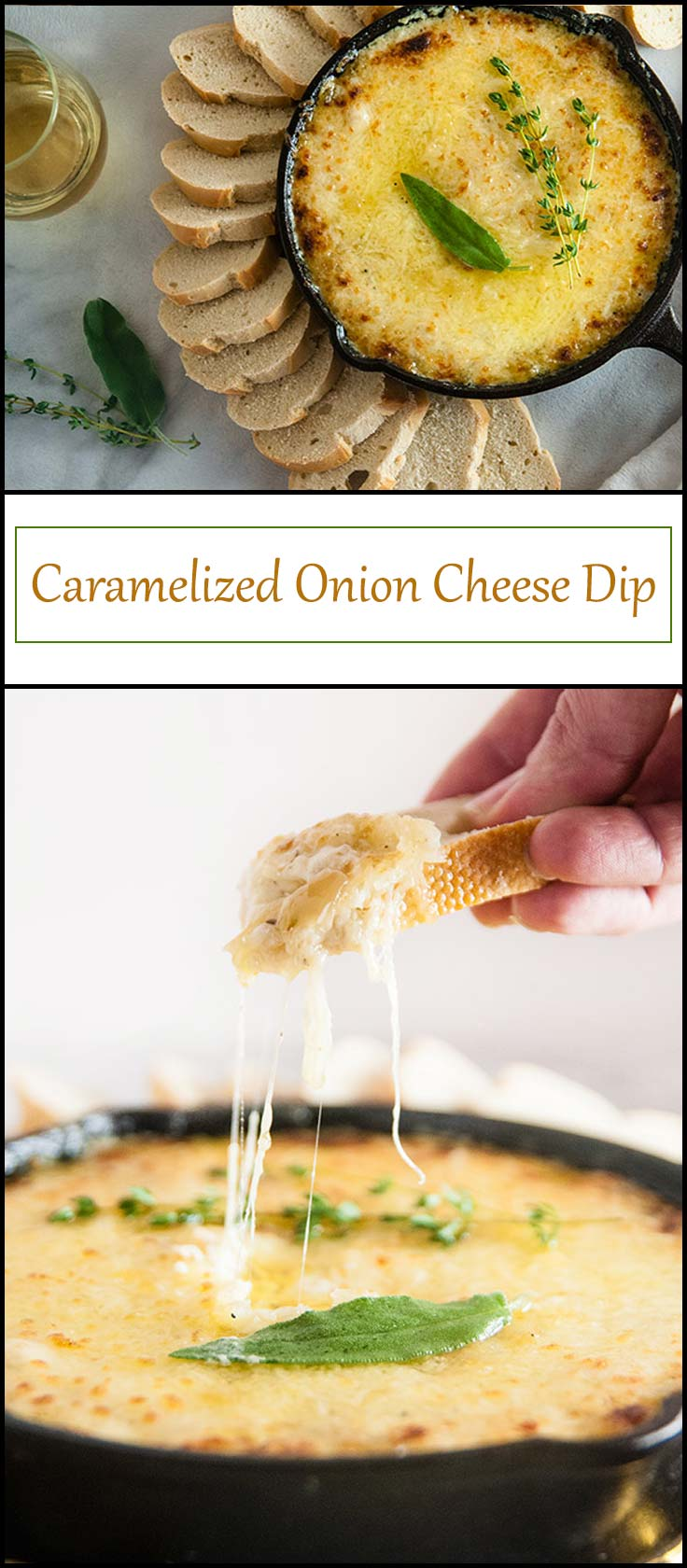 Caramelized Onion Cheese Dip from www.seasonedsprinkles.com