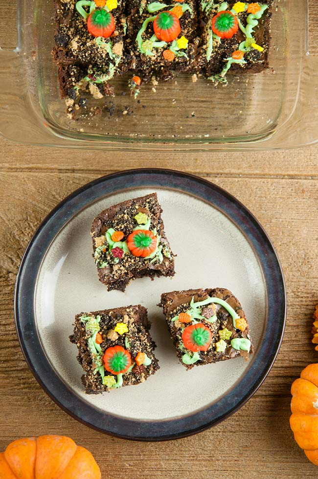 An easy food craft for Halloween and fall, pumpkin patch brownies in a glass dish on wood with pumpkins