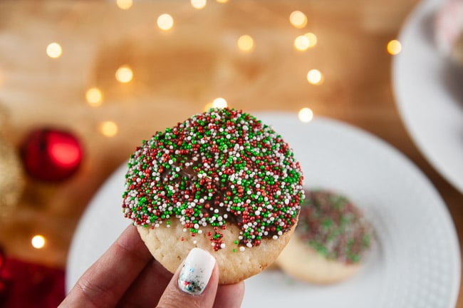 Hand holding a sugar cookie dipped in chocolate and sprinkles