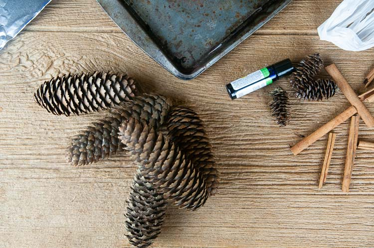 Materials to make diy cinnamon pine cones: aluminum foil, a baking sheet, pine cones, plastic bags, cinnamon sticks, cinnamon oil