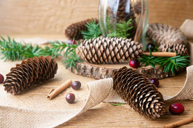 DIY scented pine cones on wood with burlap, lights, pine, cranberries and cinnamon sticks.