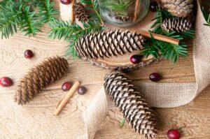 DIY Cinnamon pine cones on wood with burlap, lights, pine, cranberries and cinnamon sticks.